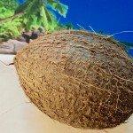 kokosnuss und pflege